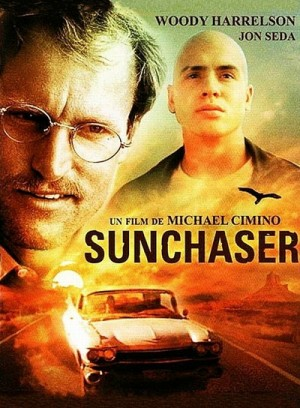 The Sunchaser (1996) DVD9