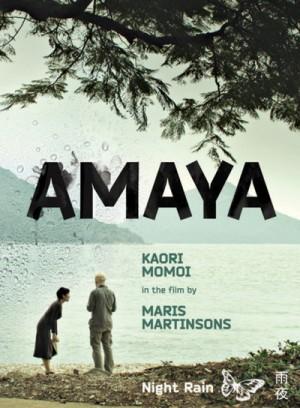 Amaya / Hong Kong Confidential (2010) DVD9