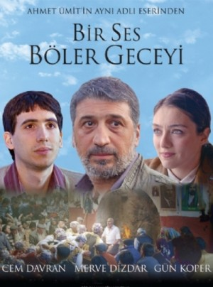 Bir ses boler geceyi / A Noise in the Night (2012) DVD9