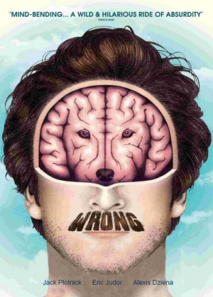 Wrong (2012) DVD9