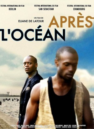 Apres l'ocean / Les oiseaux du ciel / Beyond the Ocean / Birds of Heaven (2006) DVD9
