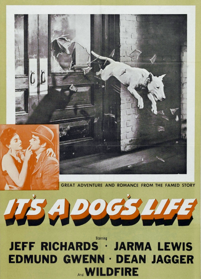 download it s a dog s life 1955 dvd5 movie world