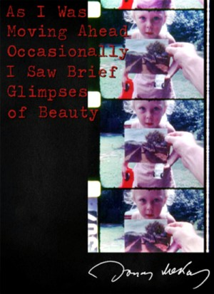 As I Was Moving Ahead Occasionally I Saw Brief Glimpses of Beauty 2000