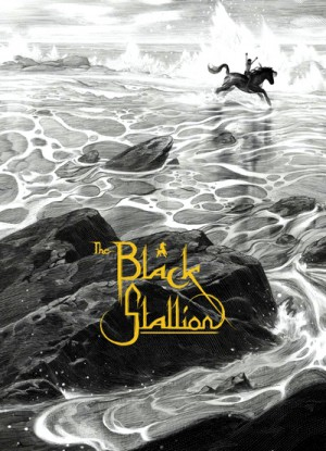 The Black Stallion 1979 Criterion Collection