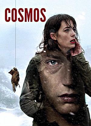 Cosmos 2015