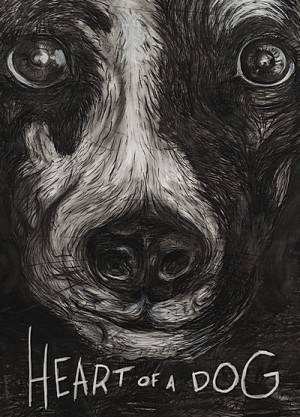 Heart of a Dog 2015 Criterion Collection